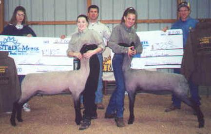 McGolden Club Lambs | Winners